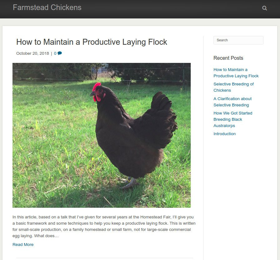 Farmstead Chickens Blog